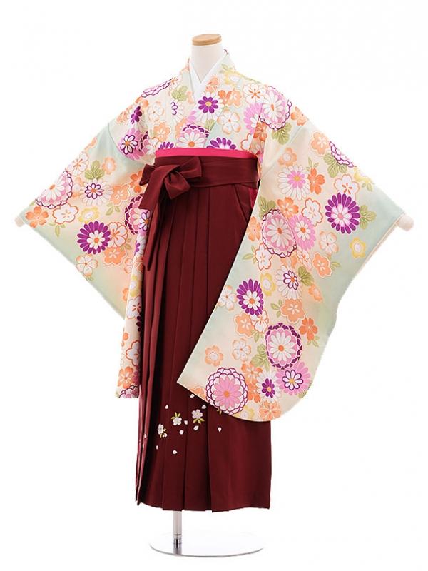 小学生卒業式袴レンタル(女の子)9679黄緑菊桜×エンジ袴