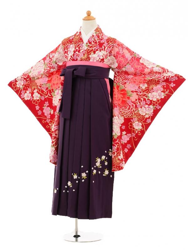 小学生卒業式袴レンタル(女の子)9184 赤地牡丹桜×パープ