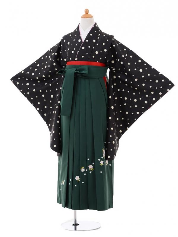 小学生卒業式袴レンタル(女の子)9310 黒ドット×グリーン袴