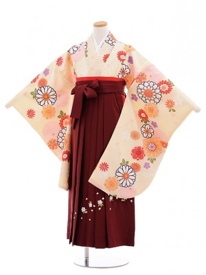 小学校卒業式袴レンタル(女の子)9674クリーム色菊梅×エンジ袴
