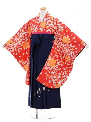 小学校卒業式袴レンタル(女の子)9732 赤地桜×紺袴
