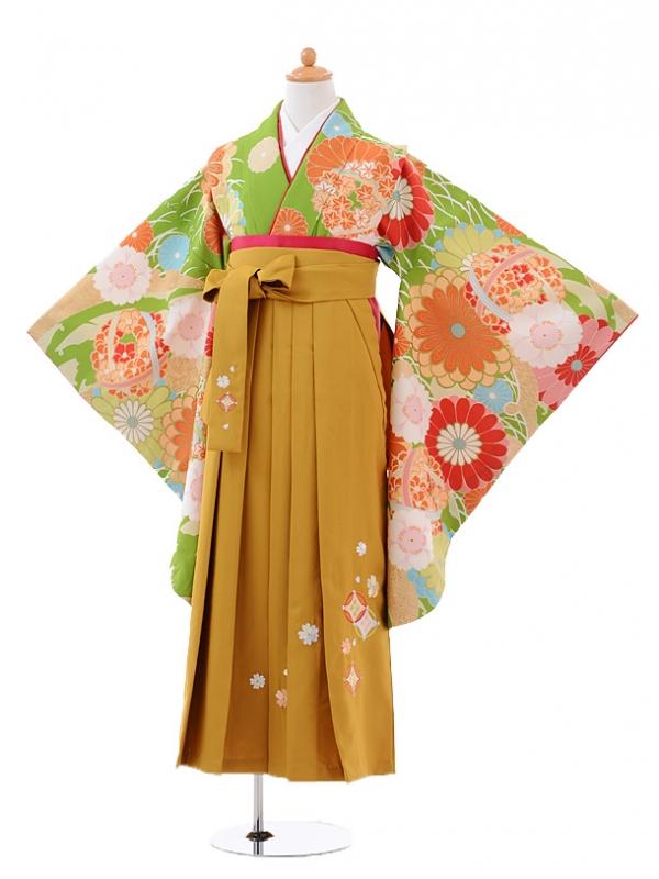小学生卒業式袴レンタル(女の子)9418黄緑菊に花くす玉×