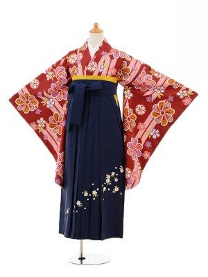 小学生卒業式袴レンタル(女の子)9251 エンジ矢絣梅×紺袴