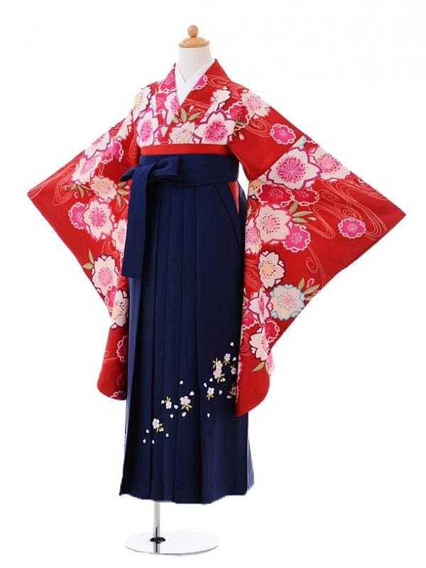 小学生卒業式袴レンタル(女の子)9385赤地流水桜×紺袴