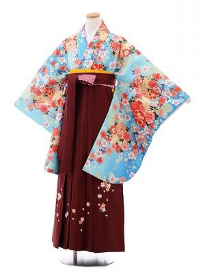小学校卒業式袴レンタル(女の子)9883水色ぼかし菊桜×エンジ袴