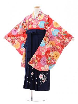 小学校卒業式袴レンタル(女の子)9772 ピンク地桜×紺袴