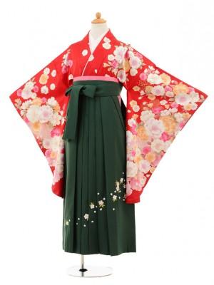 小学生卒業式袴レンタル(女の子)9198 赤地ラメ花×グリーン袴