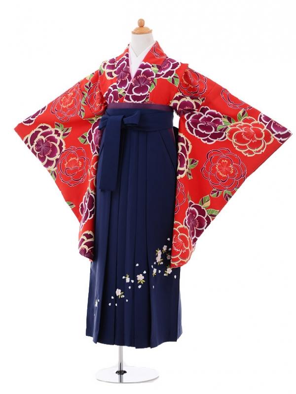 小学生卒業式袴レンタル(女の子)9324 赤牡丹×紺袴