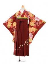 小学生卒業式袴女児9254 エンジ色牡丹×エンジ