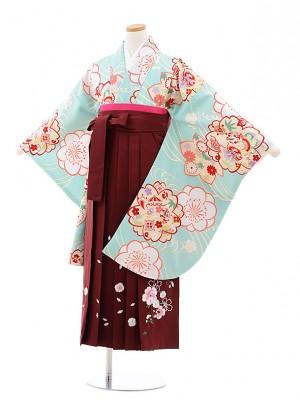小学校卒業式袴レンタル(女の子)9742 水色寿梅桜×エンジ袴