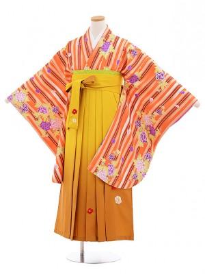小学生卒業式袴レンタル(女の子)9554オレンジストライプからし袴