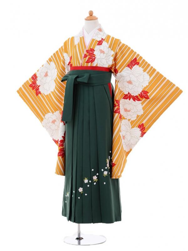 小学生卒業式袴レンタル(女の子)9306 からし色牡丹×グリ