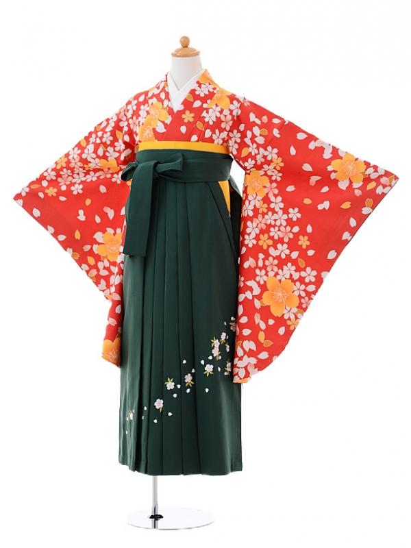 小学生卒業式袴女児9399赤地桜ちらし×緑袴