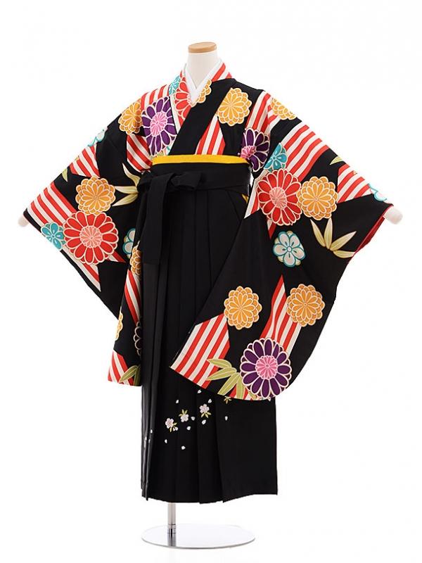 小学生卒業式袴レンタル(女の子)9613黒矢柄菊×黒袴