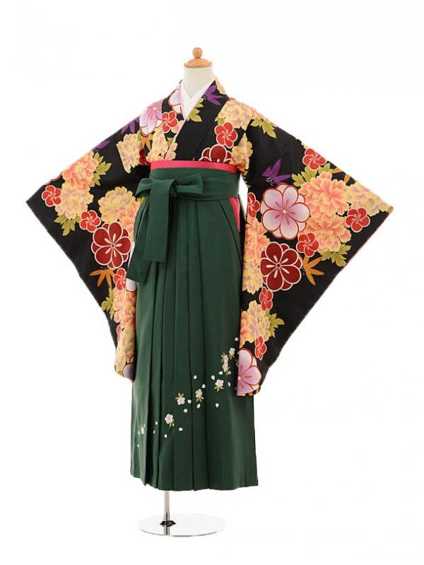 小学生卒業式袴レンタル(女の子)9243 黒地牡丹×クリーン袴