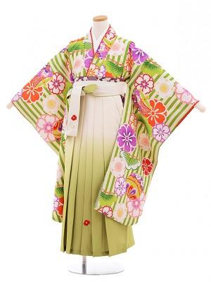 小学生卒業式袴レンタル(女の子)9540小町グリーンストライプ×クリーム袴