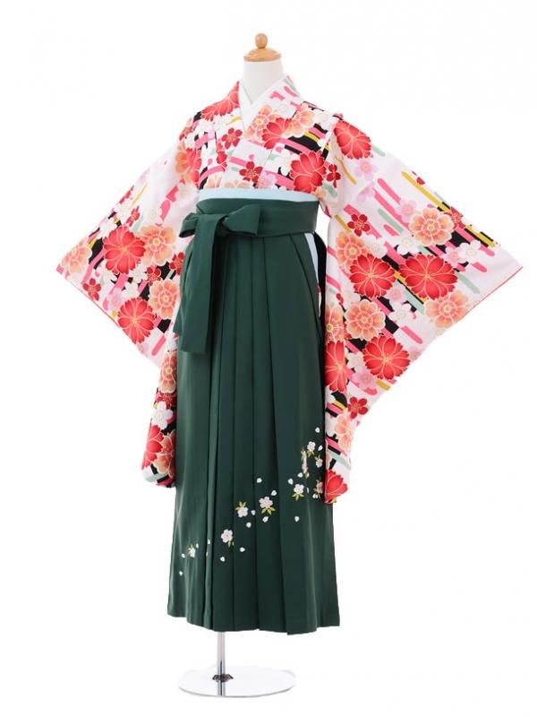 小学生卒業式袴レンタル(女の子)9258 白地赤花×グリーン袴