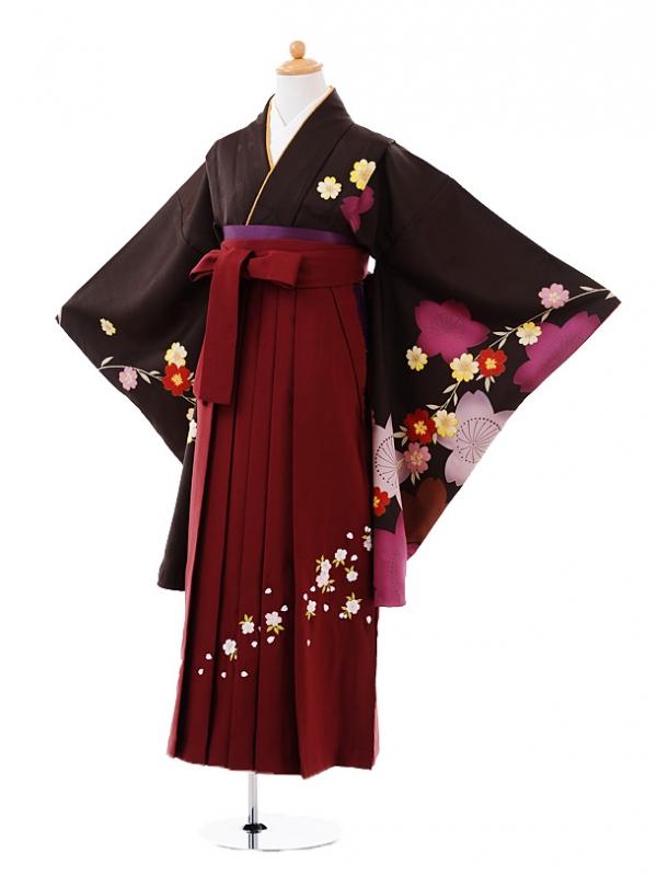 小学生卒業式袴レンタル(女の子)9377 茶色桜×エンジ袴