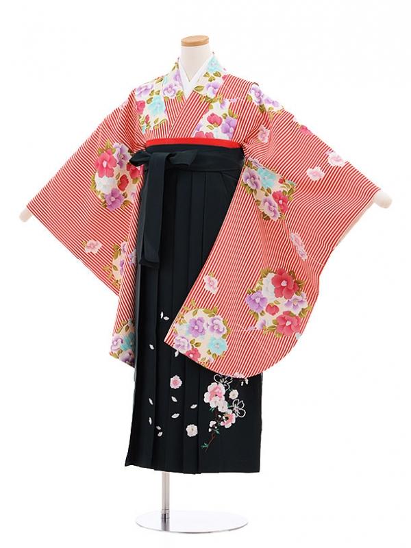 小学生卒業式袴レンタル(女の子)9600赤ストライプ椿×深緑袴