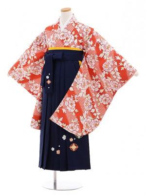 小学生 卒業式 袴レンタル(女の子)9561赤茶ぼたん×紺袴