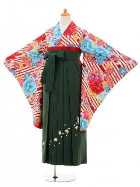 小学生卒業式袴女児9221 赤地ストライプ×グリーン