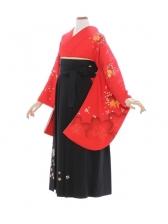 女性袴490/朱赤に桜
