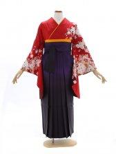 女性袴603/赤に桜地模様