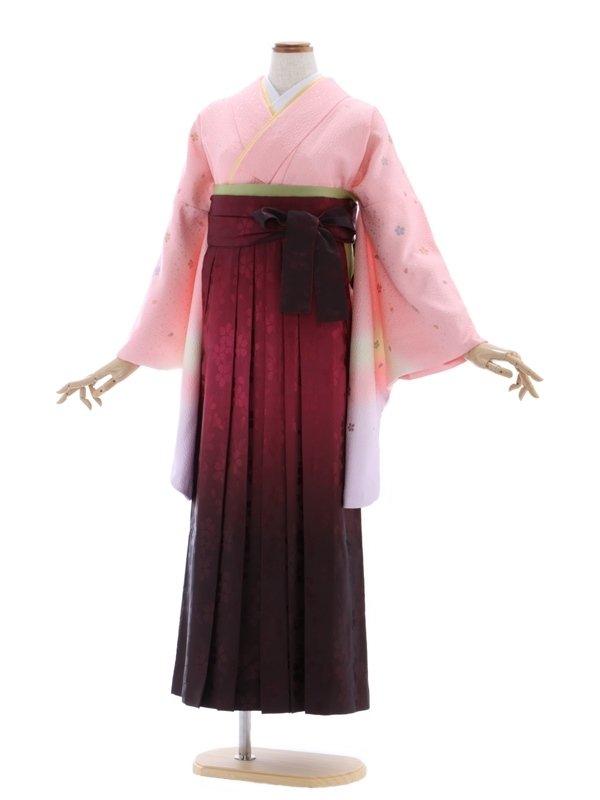 女性袴576/ピンクオーロラ