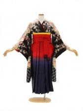 女性袴520/グレーに桜