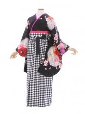 女性袴626/モリハナエ黒地大輪菊柄