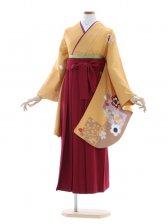 女性袴572/からし色桜シルエット