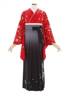 女性袴451/赤色桜花文