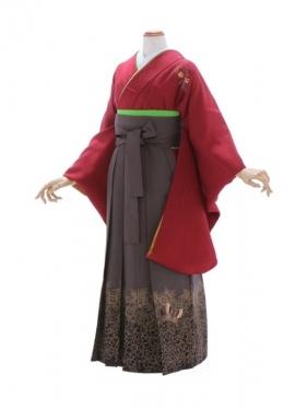 女性袴97/kansaiエンジ