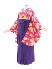 女性袴623/ワイン色小紋菊柄
