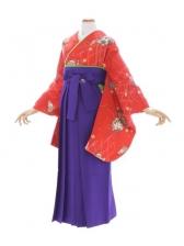 女性袴596/朱赤てまり菊柄