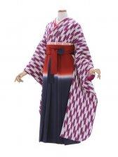 女性袴20/矢がすり紫振袖