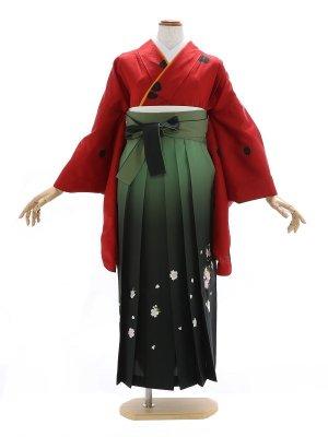 女性袴281/エンジ色 波地模様にバラ