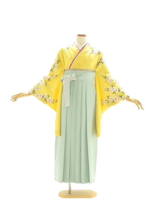 女性袴495/黄色に染桜