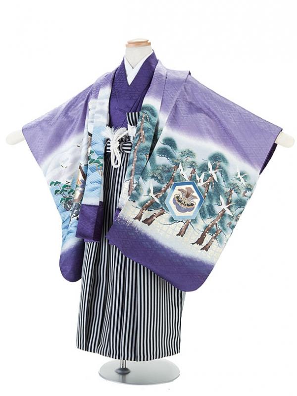 七五三(5男)7-8紫・兜