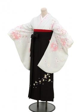 卒業袴レンタル h047白×桜
