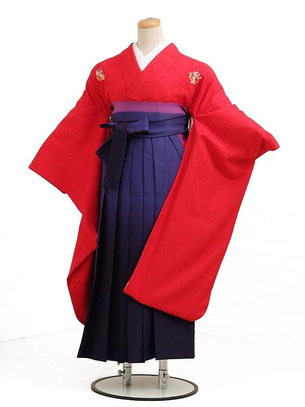 卒業袴レンタル h022赤花紋
