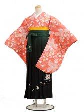 卒業袴レンタル h001小紋レンタルオレンジ桜