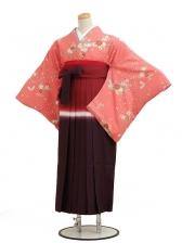 卒業袴レンタル h023ローズ小花