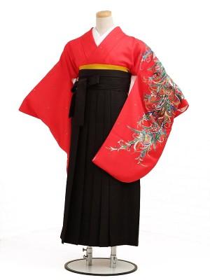 卒業袴レンタル h018赤