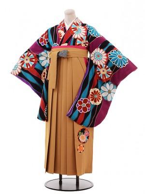 卒業袴レンタル h245 九重 パープル地 菊×からし色袴