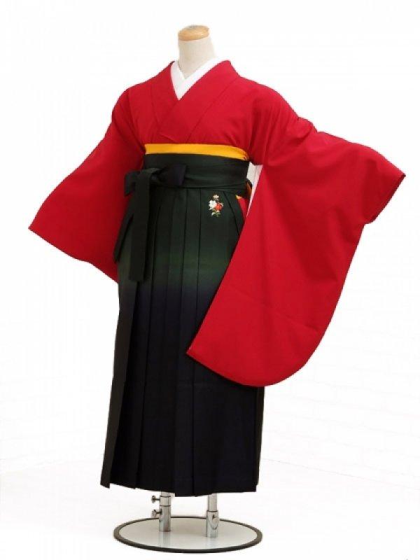 卒業袴レンタル h019赤無地