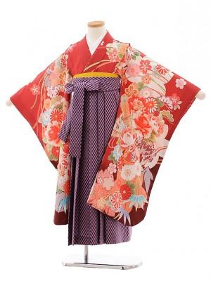 女児袴レンタル(7歳)7772 赤地 扇に花×パープル矢柄袴
