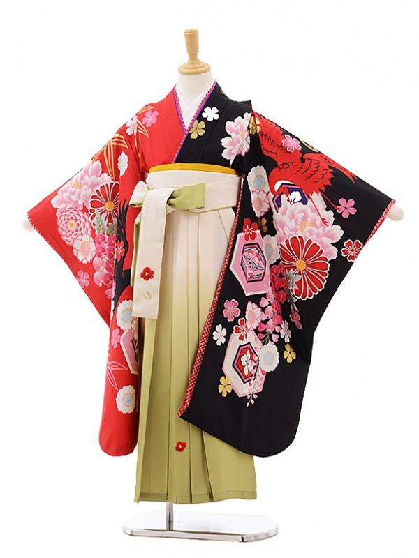 女児袴(7歳)7638 JAPAN STYLE 黒赤 ぼたん×クリームぼかし袴