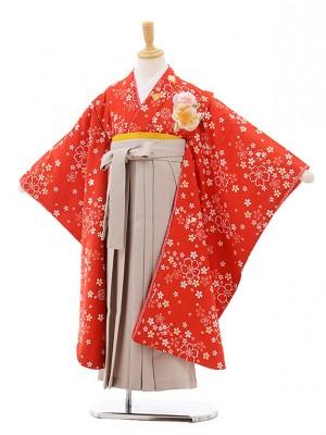 女児袴レンタル(7歳)7636 赤地 桜×ベージュ袴