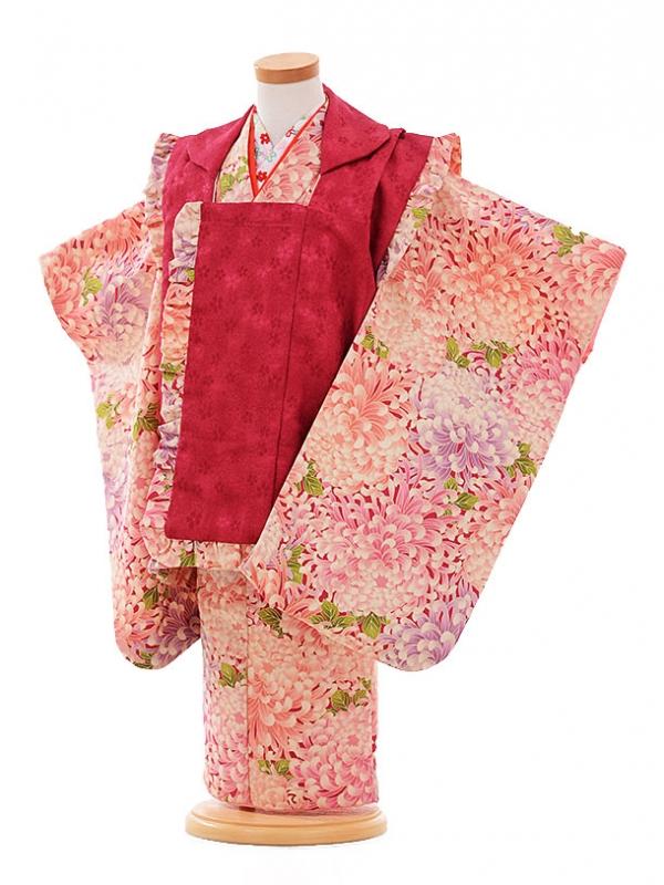 七五三レンタル(3歳女被布)F172 エンジ色×ピンク 菊